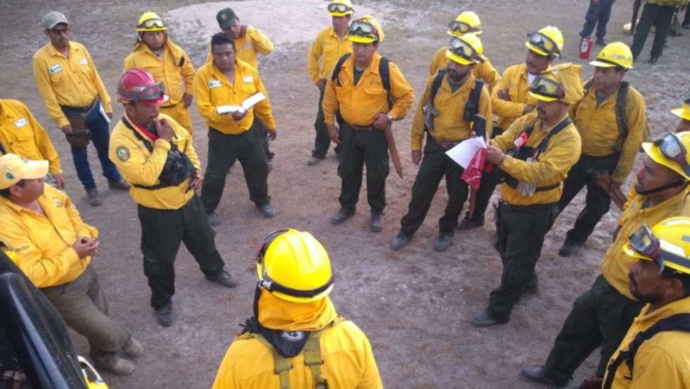 Foto: La Conafor informó sobre otros dos incendios más en Quintana Roo, uno localizado en Cancún y otro Mahahual, 22 de julio de 2019 (Twitter @CONAFOR)