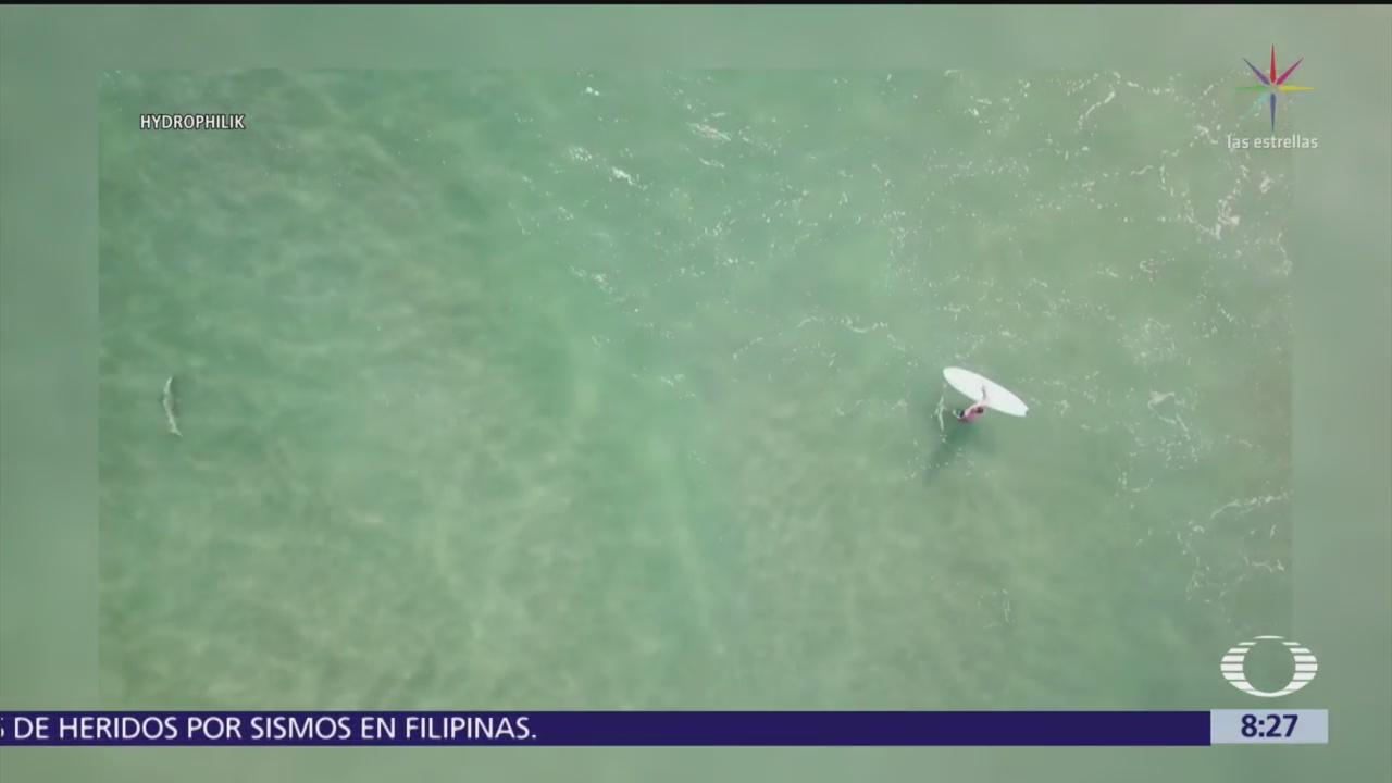 Dron capta a tiburón nadando cerca de niños en Australia