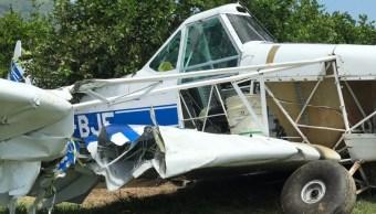 Foto: La avioneta cayó sobre una parcela de limón, 25 de julio de 2019 (Noticieros Televisa)