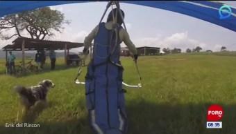 #ElVideodelDía: El perro volado