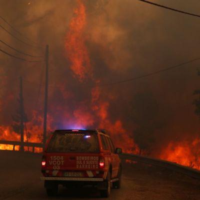 Más de mil bomberos combaten incendio forestal en Portugal