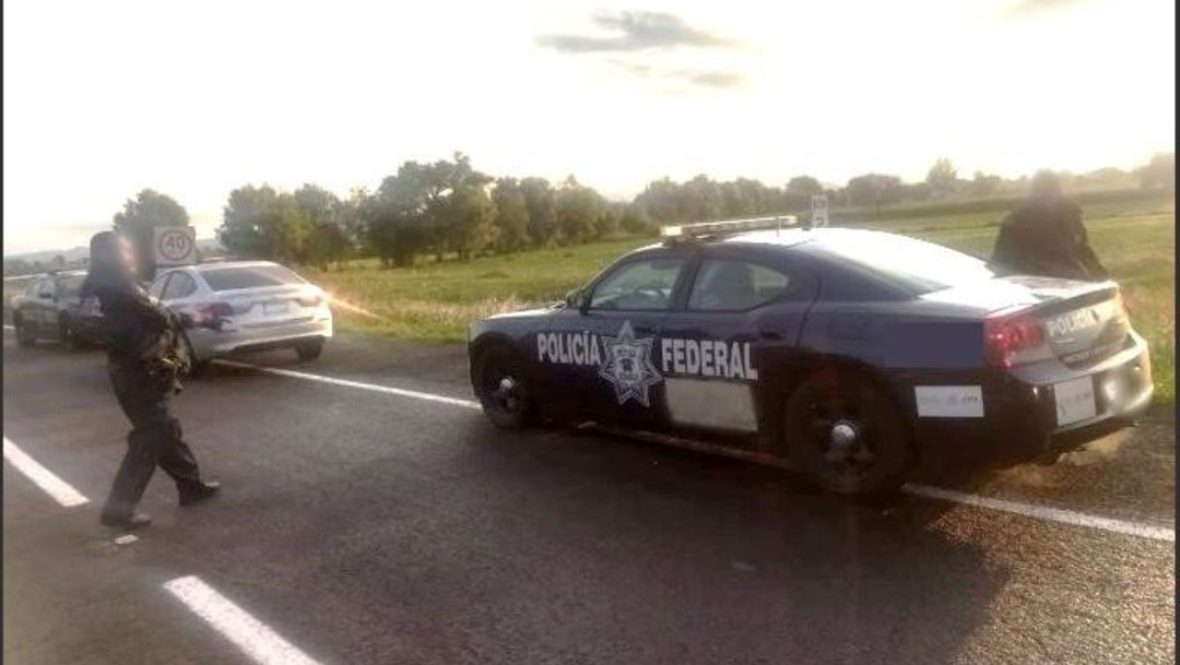 Policías federales hallan droga en oso de peluche