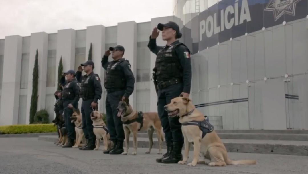 Unidad Canina de la Policía Federal pide reintegrarse a Guardia Nacional