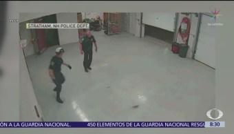 Policías persiguen a ardilla dentro de su propia estación