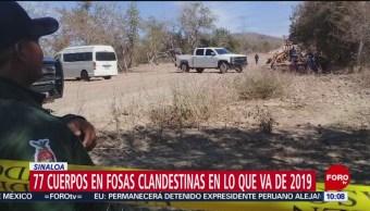 FOTO: Suman 77 cuerpos en fosas clandestinas de Sinaloa en lo que va de 2019, 21 Julio 2019