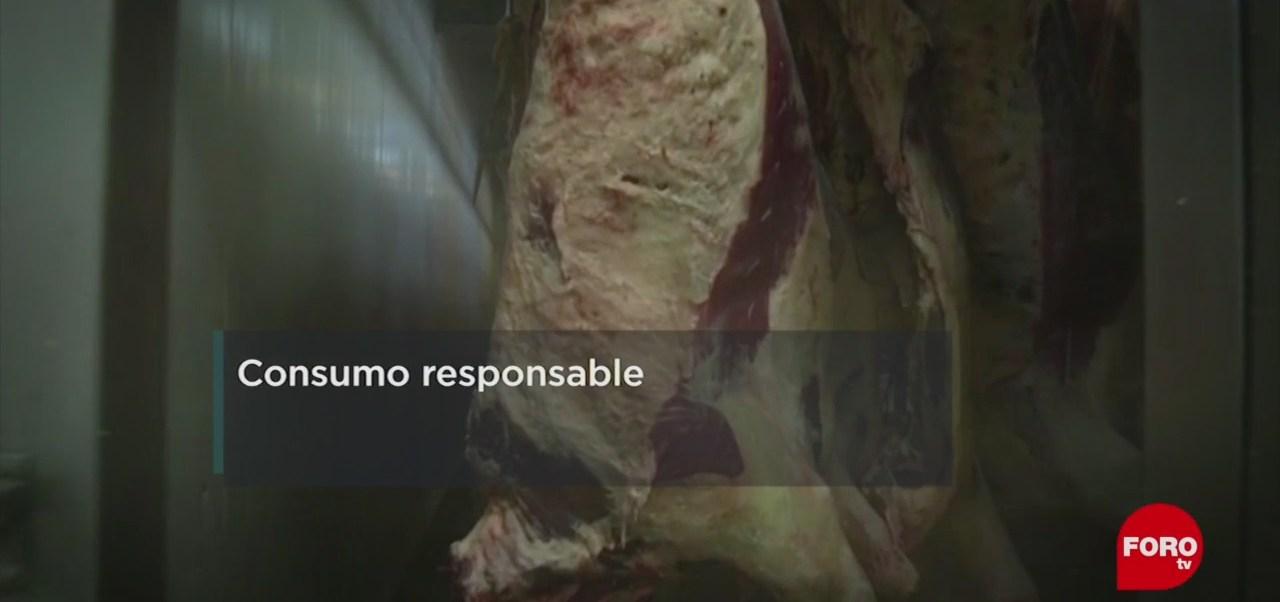FOTO: UNAM propone a ganaderos consumo responsable, 7 Julio 2019