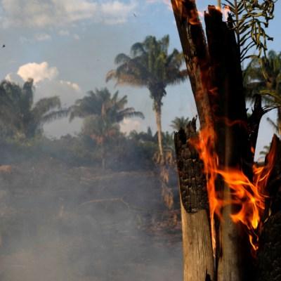 ¿Quién es responsable por los incendios en el Amazonas?