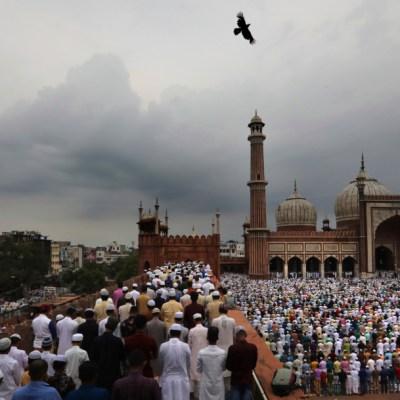 Foto: Los musulmanes en India son minoría, 31 de agosto de 2019 (AP, archivo)