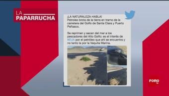 Foto: Brote Petróleo Sonora Noticias Falsas 5 Agosto 2019