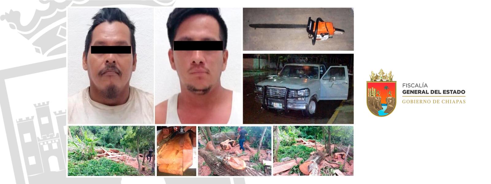 FOTO Chiapas sentencia a 2 hombres a sembrar árboles por ecocidio (Fiscalía de Chiapas)