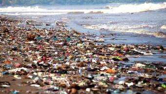 Partículas de plástico en agua potable no representan riesgo en la población: OMS