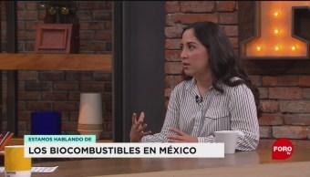 FOTO: Diana Coronado, estudiante de la Universidad Autónoma de Nuevo León, habla sobre el foro de energías limpias, 17 Agosto 2019