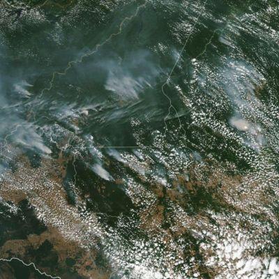 La NASA muestra incendio que arrasa la Amazonía brasileña