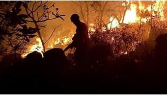 Foto: El incendio en la zona del Amazonas sigue fuera de control, 24 de agosto de 2019 (EFE)