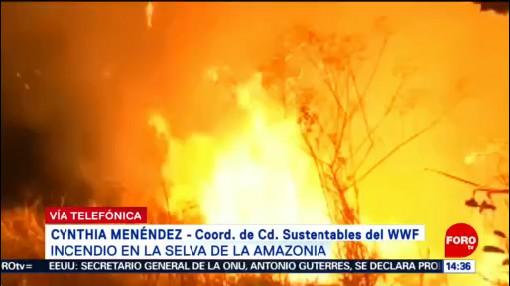 Foto: Incendio Amazonía Agudizará Sequías Cynthia Menéndez 22 Agosto 2019
