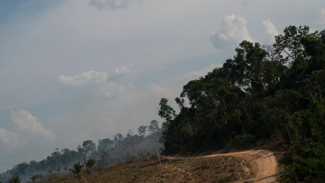 FOTO G7 moviliza 20 mdd para combatir incendio en Amazonía (AP)