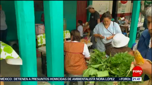 Foto: xMercado Vende Productos Libres Agroquímicos Oaxaca Foto: 26 Agosto 2019