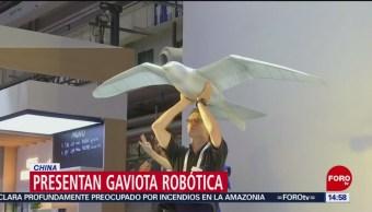 Foto: Gaviota Robótica Conferencia Mundial Robots China 22 Agosto 2019