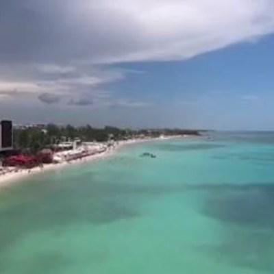 Cambio meteorológico ayudó a limpiar las playas de sargazo