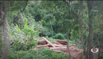 Foto: Talamontes Tendrán Plantar 3 Mil Árboles Chiapas 21 Agosto 2019