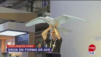 Todo Pasa En China: Dron en forma de ave