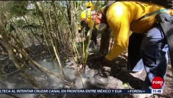 FOTO: Tras 22 días, controlan incendio en reserva de Sian Ka´an, 3 AGOSTO 2019