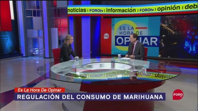 Foto: Regulación Marihuana Qué Falta Se Haga Ley 18 Septiembre 2019
