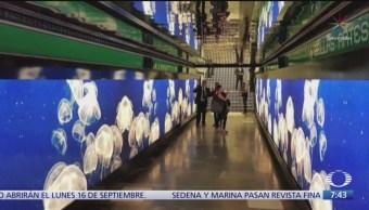 Despierta con Cultura: Visita la exposición en el Metro CDMX
