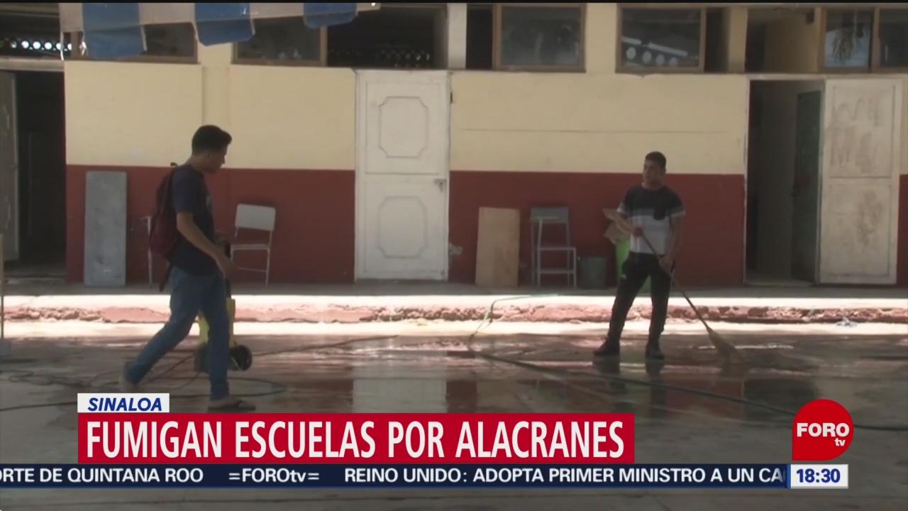 FOTO: Fumigan Escuelas Por Alacranes Sinaloa