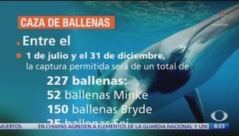 Foto: Japón Reanuda Casa Comercial Ballenas