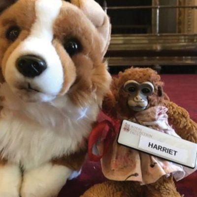 Reina Isabel devuelve mono de juguete perdido a niña australiana