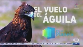 'Por el planeta': El vuelo del águila