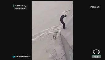 FOTO: Video Rescatan Perro Atrapado Inundación Monterrey