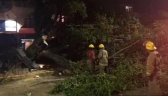 Foto: En la carretera Oxolotan-Cuitláhuac el deslizamiento de rocas de un cerro y un árbol caído obstruyo el paso de vehículos, 26 de octubre de 2019 (Noticieros Televisa)