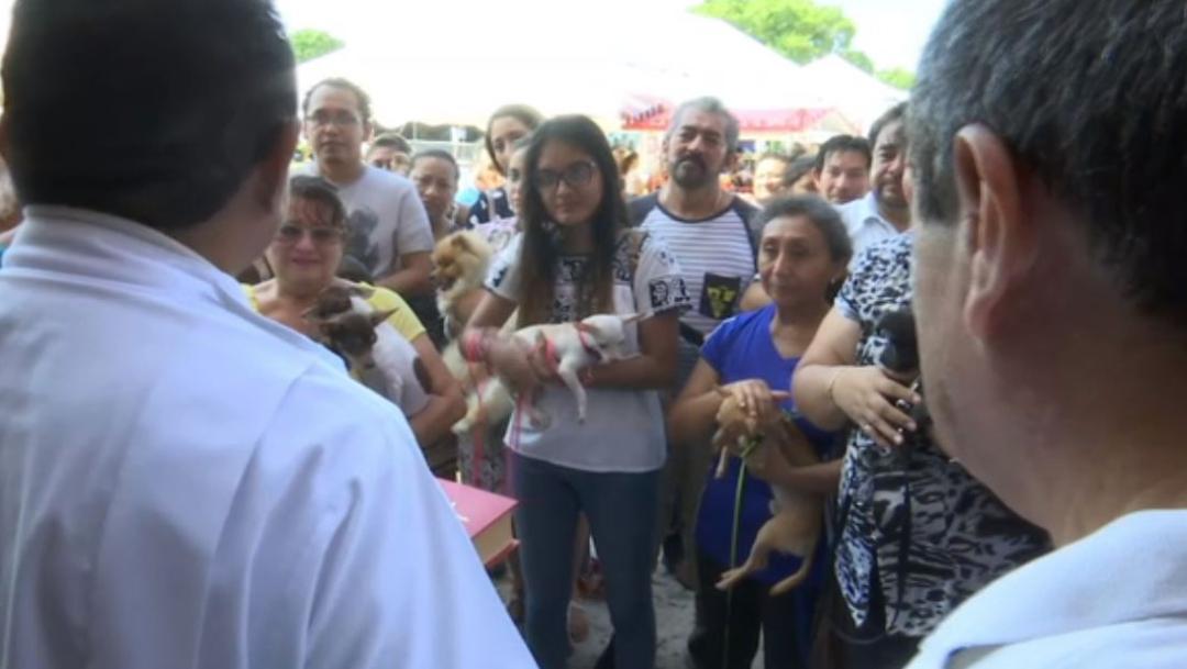 Las mascotas acompañadas de sus dueños fueron bendecidas, 05 de octubre de 2019, (Noticieros Televisa)