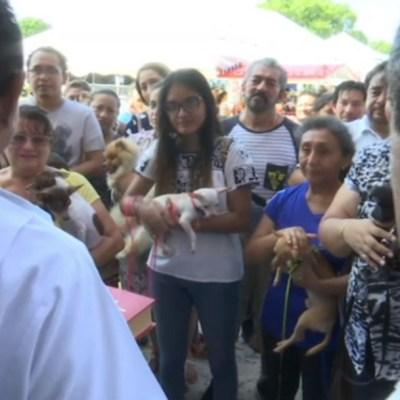 Mascotas reciben bendiciones en Campeche