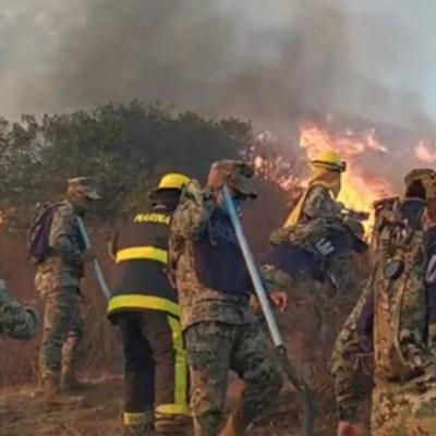 Combaten 464 brigadistas incendios en Baja California: Conafor