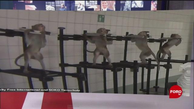 FOTO: Descubren laboratorio terror Alemania