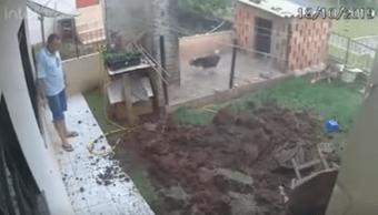 Foto Explota su patio para deshacerse de plaga de cucarachas 23 octubre 2019