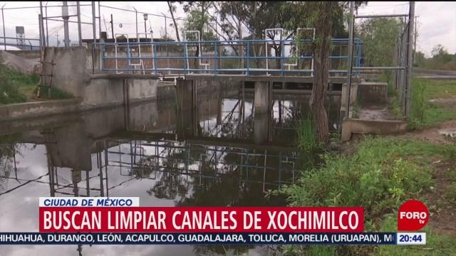 Foto: Investigadores Cinvestav Limpiar Canales Xochimilco 22 Octubre 2019