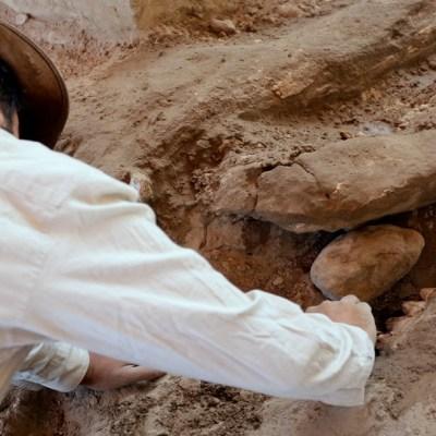 Un hombre y su hijo encuentran restos de mastodonte de más de 10 mil años en Puebla