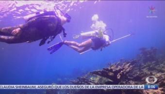México combate enfermedad de corales en Quintana Roo