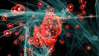 Foto:Molecula podria destruir celulas cancerigenas. 2 Octubre 2019.