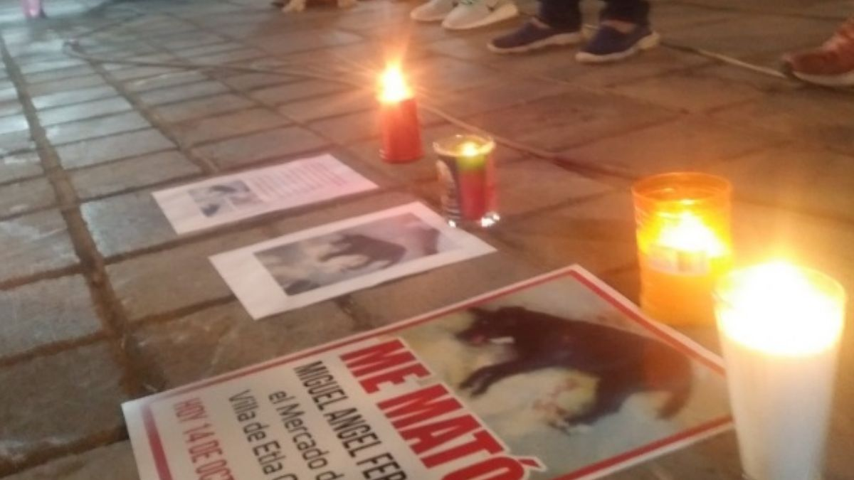 Protesta por perrito asesinado en mercado de Oaxaca.