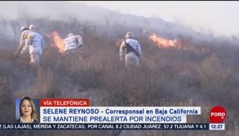 Se mantiene alerta por incendios forestales en Baja California