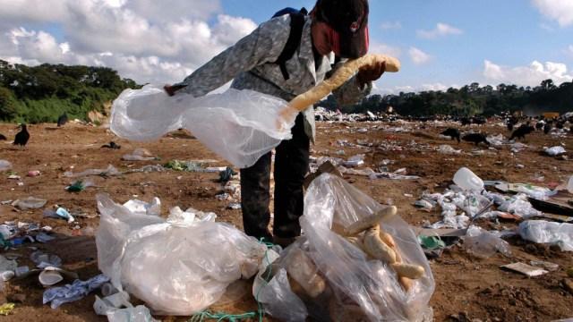 FOTO Se tiran toneladas de alimentos mientras crece el hambre, advierte la ONU (EFE)