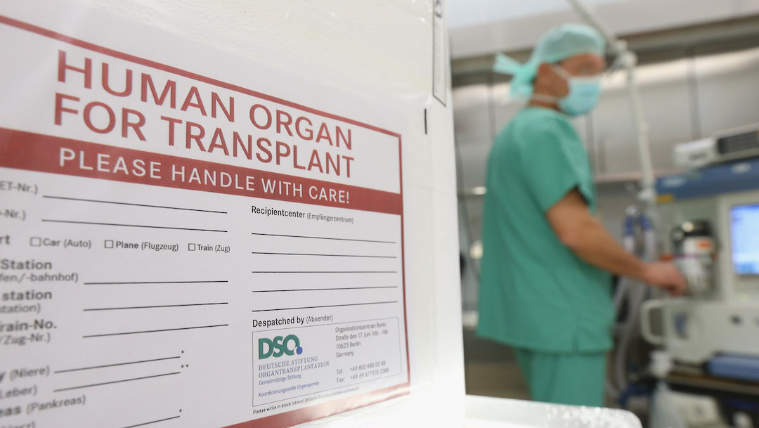 Foto Rechaza trasplante de hígado porque provenía de una mujer 9 octubre 2019