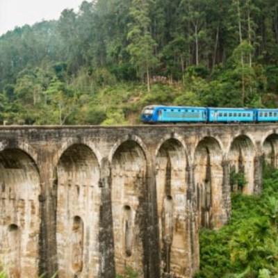 Tras aprobación en consultas, en enero comenzará licitación de Tren Maya, dice AMLO