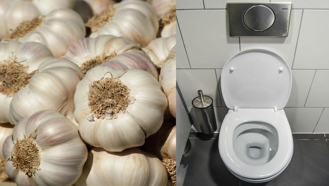 Foto Qué pasa si colocas dejas un ajo dentro del inodoro toda la noche 29 noviembre 2019