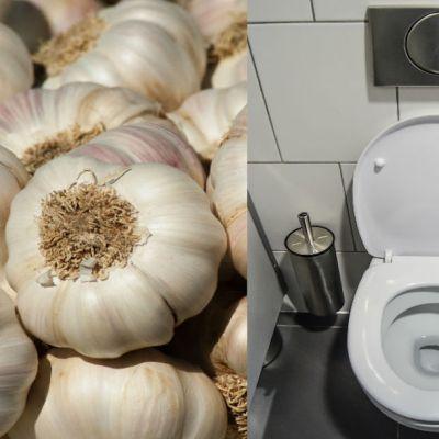 ¿Qué pasa si colocas un ajo dentro del inodoro toda la noche?